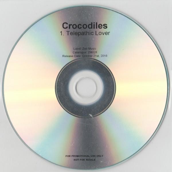 croc04