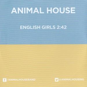 animal005