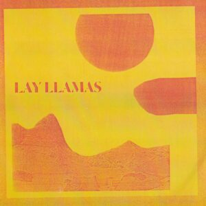 lay035